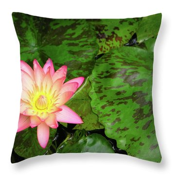 F6 Water Lily Throw Pillow by Donald k Hall