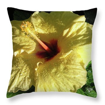 F9 Yellow Hibiscus Throw Pillow by Donald k Hall