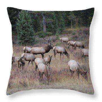 Faabullelk111rmnp Throw Pillow