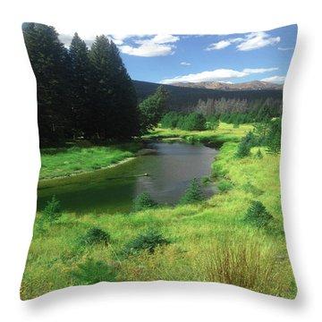 Faafall121rmnp Throw Pillow