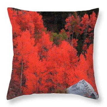 Faafallscene101 Throw Pillow