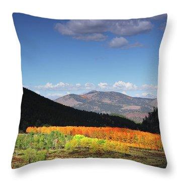 Faafallscene116 Throw Pillow