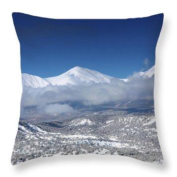 Faashavanowinter2 Throw Pillow