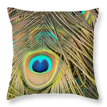 Throw Pillow featuring the photograph Fabulous Feathers by Margaret Bobb