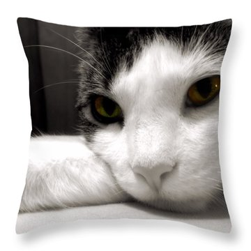 Fabulous Feline Throw Pillow by JAMART Photography