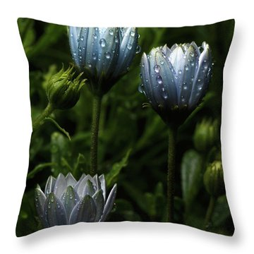 Fabulously Beautiful Blue Flowers With Raindrops Throw Pillow by Sergey Taran