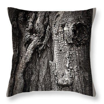 Face In A Tree Throw Pillow by JoAnn Lense