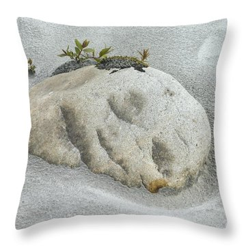 Face In The Sand At Baird Glacier Outwash Throw Pillow