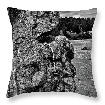 Faces In The Rock 12 Throw Pillow