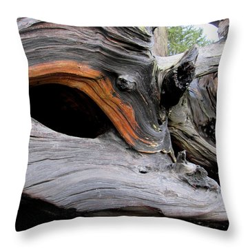 Driftwood Unicorn Throw Pillow