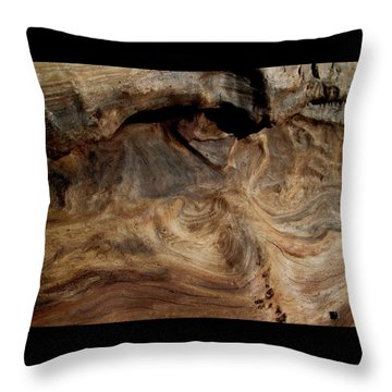 Faces In The Wood #3 Throw Pillow