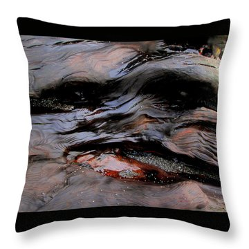 Faces In The Wood #4 Throw Pillow