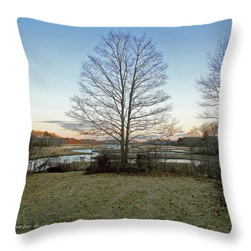 Facing Brave Boat Harbor Throw Pillow