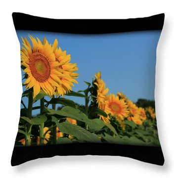 Throw Pillow featuring the photograph Facing East by Chris Berry