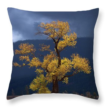 Facing The Storm Throw Pillow by Edgars Erglis
