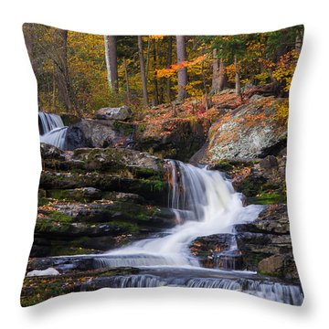 Throw Pillow featuring the photograph Factory Falls 2 by Mark Papke
