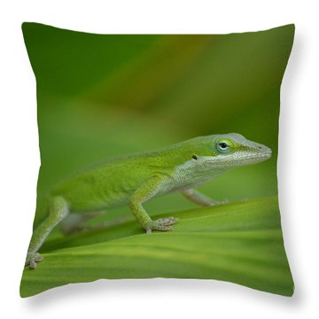 Fade Into The Green Throw Pillow by Kathy Gibbons