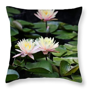 Fade To Pink Throw Pillow by Katherine White