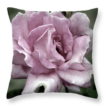 Faded Beauty Rose 0226 H_2 Throw Pillow
