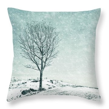 Faded Into Winter Throw Pillow