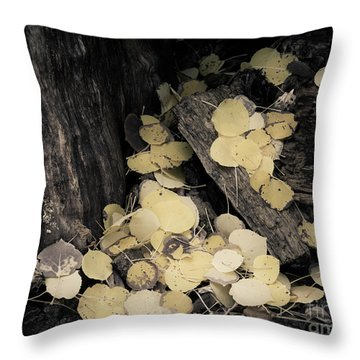Throw Pillow featuring the photograph Faded Pot Of Gold by The Forests Edge Photography - Diane Sandoval