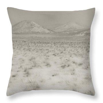 Faded Storm Throw Pillow by Scott Sawyer