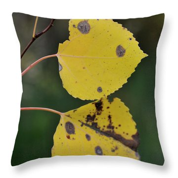 Throw Pillow featuring the photograph Fading Aspen I by Ron Cline