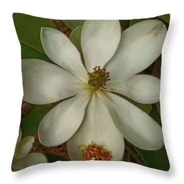 Fading Glory Throw Pillow