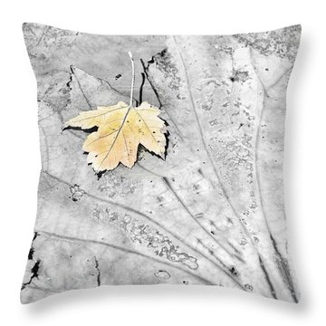 Fading Leaf On Lily Pad Throw Pillow by Greg Jackson