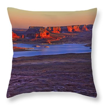 Fading Light Throw Pillow by Chad Dutson