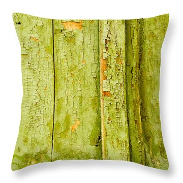 Throw Pillow featuring the photograph Fading Old Paint by John Williams