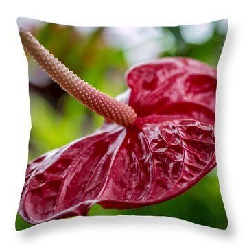 Faerie Bed Throw Pillow