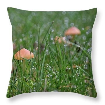 Faerie Hunting Throw Pillow