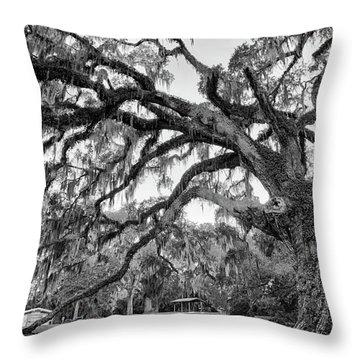 Fairchild Tree Throw Pillow
