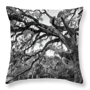 Fairchild Tree Throw Pillow