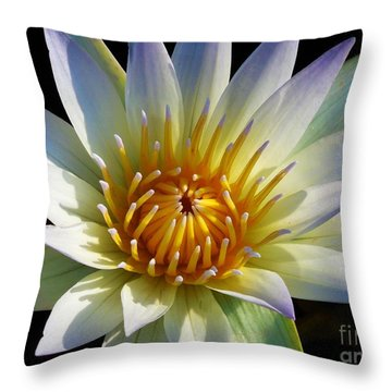Fairest Lily Throw Pillow by Chad and Stacey Hall