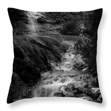Fairmont Waterfall Throw Pillow