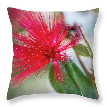 Fairy Duster Throw Pillow