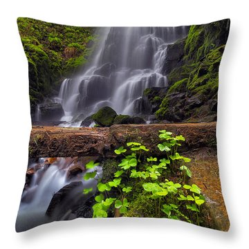 Fairy Falls In Spring Throw Pillow by David Gn