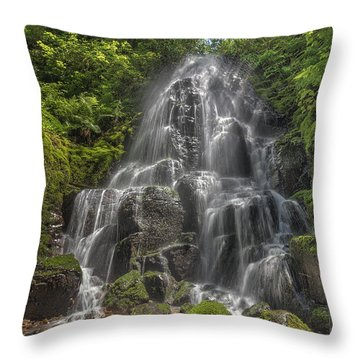 Fairy Falls On A Sunny Day Throw Pillow by David Gn