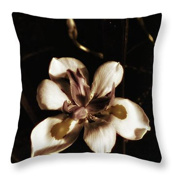 Throw Pillow featuring the photograph Fairy Iris. A Butterfly Landed On My by Mr Photojimsf