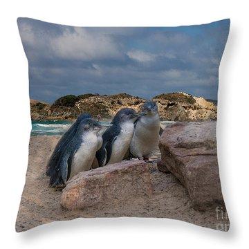 Throw Pillow featuring the photograph Fairy Penguins by Elaine Teague