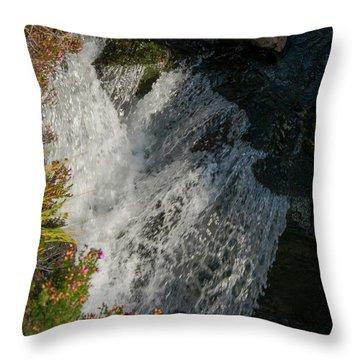 Fairy Pool Falls Throw Pillow