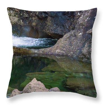 Fairy Pool Reflection Throw Pillow