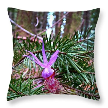 Fairy Slipper  Throw Pillow