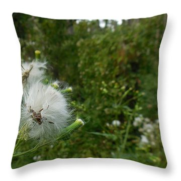 Fairy Woods Throw Pillow