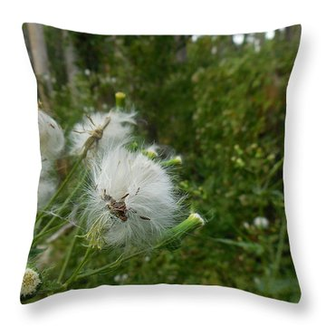 Fairy Woods Throw Pillow
