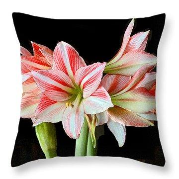Fairyland Amaryllis  Throw Pillow