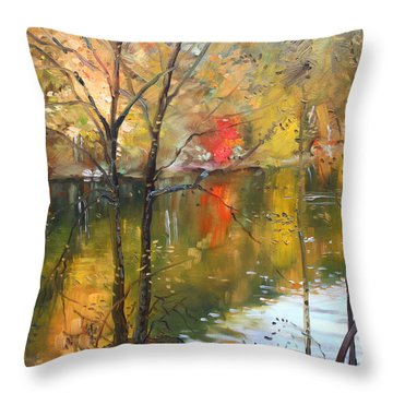 Fall 2009 Throw Pillow