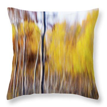 Throw Pillow featuring the photograph Fall Abstract by Mircea Costina Photography